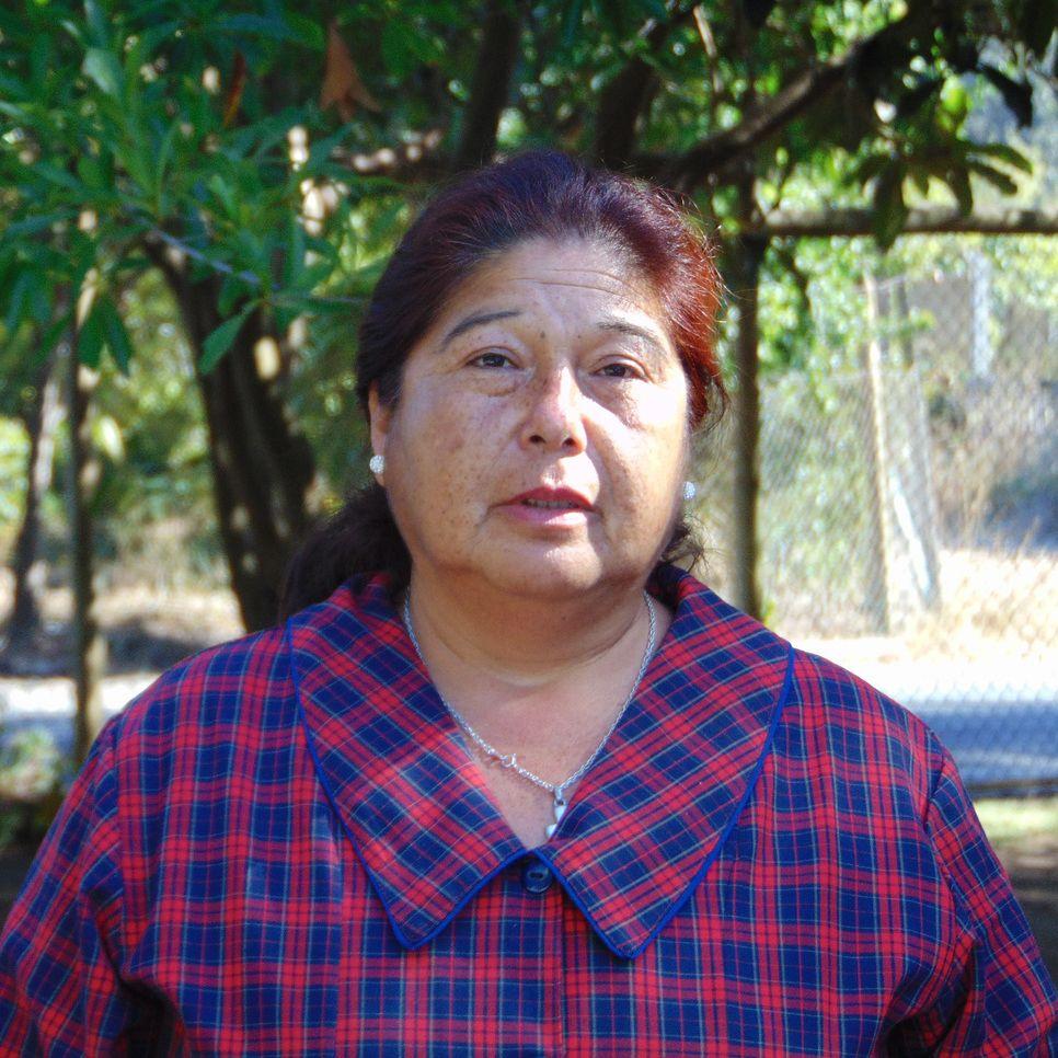 Marta Soto Pincheira